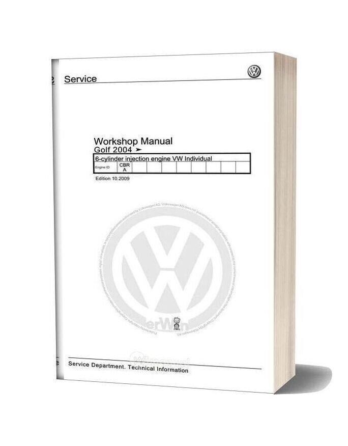 Volkswagen 6 Cylinder Injection Engine Individual